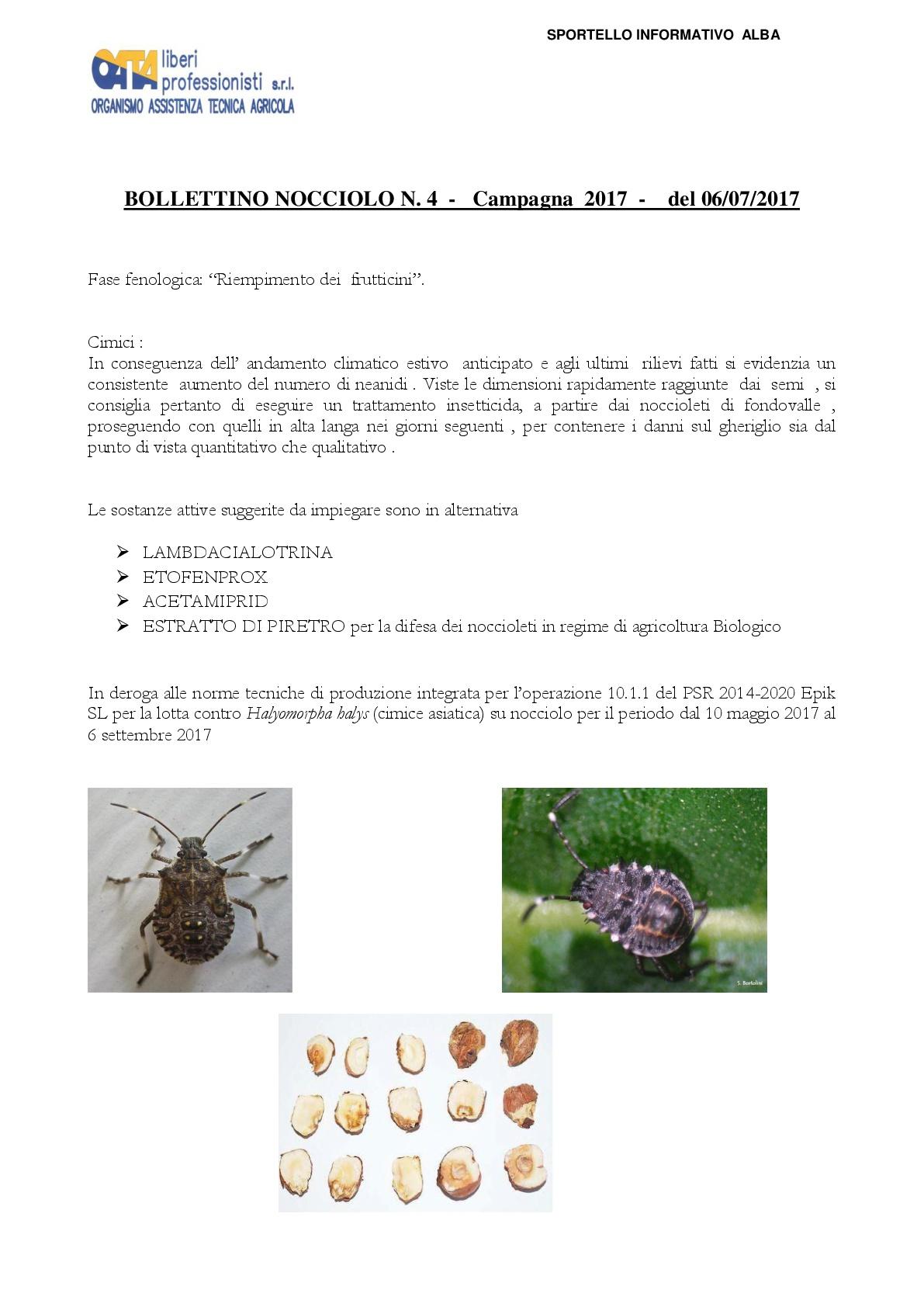 bollettino_nocciolo_4_1