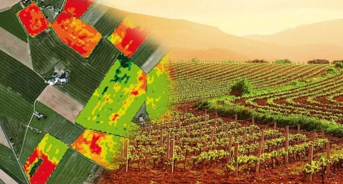 Il telerilevamento per l'agricoltura di precisione