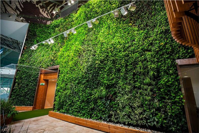 Giardino verticale miglioratore della qualit della vita for Giardino verticale