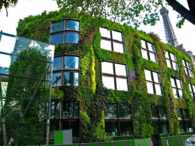 Giardino verticale - Verde su caseggiato urbano